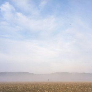 israel zen landscape